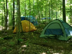 The Iron County Forestry Committee voted to evict the LCO Harvest Camp on the border of Ashland and Iron Counties.