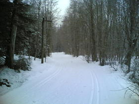 Cross country ski trails are in great shape this winter.