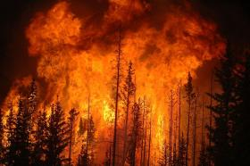 Canadian forest fire