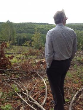 Sen. Johnson toured an aspen clear cut in Forest county to see its regeneration.