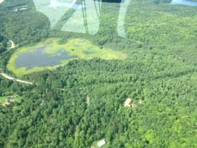 Oneida County lake as seen from above, partially covered with bright green wild rice beds.