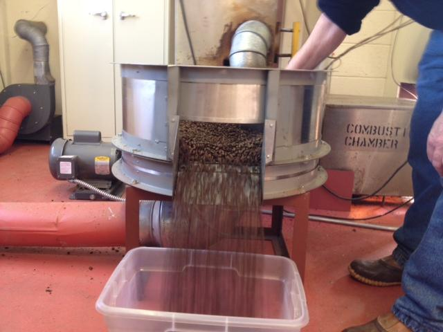 Once cool, the beans are poured into a container for temporary storage.