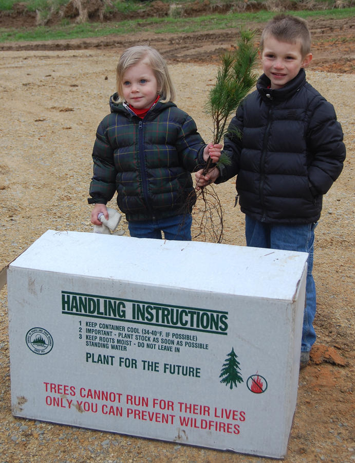 Arbor Day Focuses Public On What Trees Mean To Us Wxpr