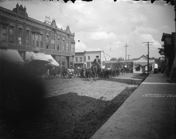 View from the sidewalk towards a man on horseback driving cattle on a city street in Black River Falls circa 1880-1940.