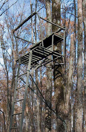 Tree Stand Safety The Focus As Archery Season Opens Wxpr