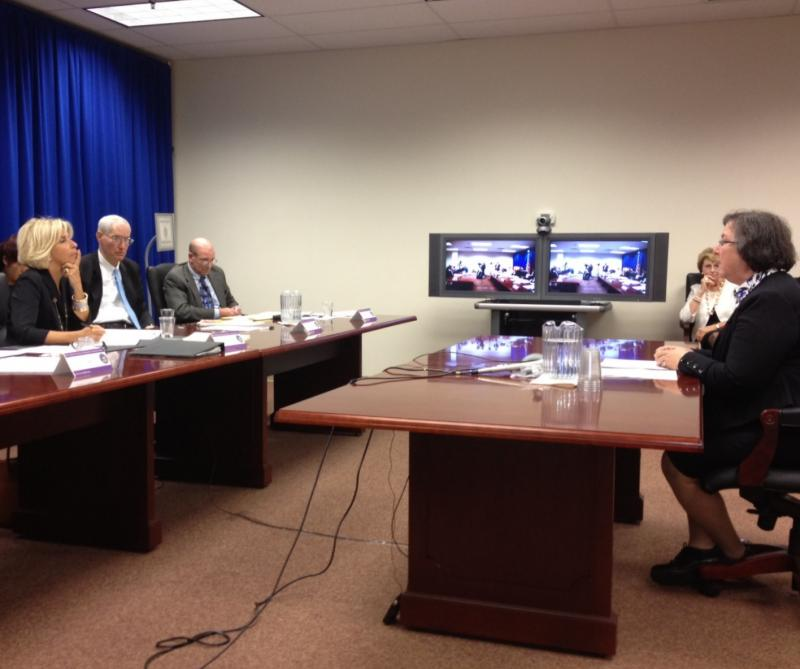 Sue Lerner of Common Cause testifies at JCOPE hearing. Chair Janet DiFiore listens.