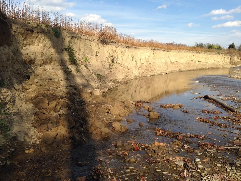 An steep embankment along Angelica Creek in New York shows evidence of long-term erosion.