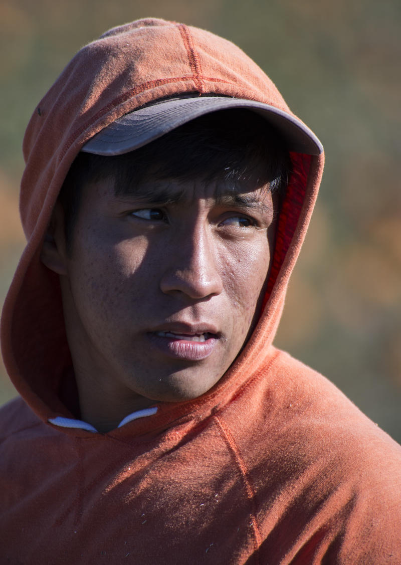 Antonio Romero Tapia, a Mexican migrant worker, looks on while harvesting pumpkins at Root Brothers Farm. Getting the workers to the U.S. can be costly for the farm. This includes months of paperwork and transportation arrangements.