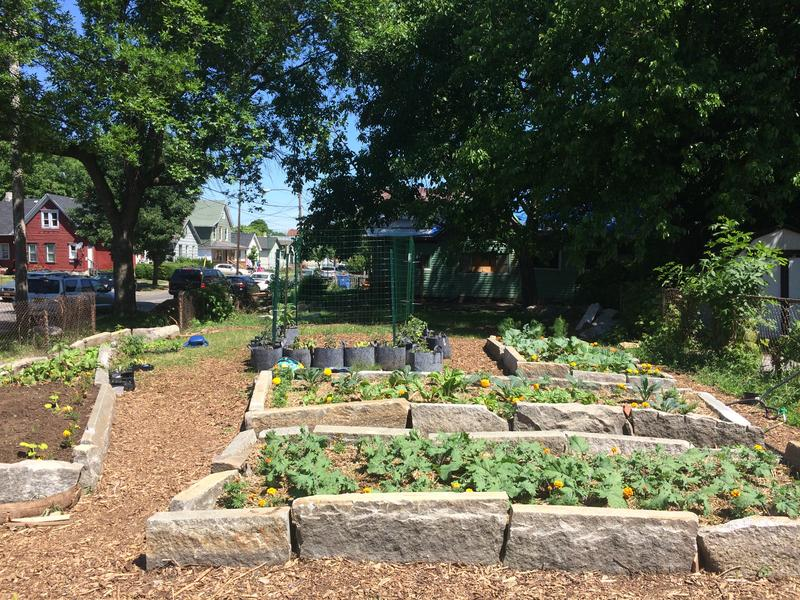First Market Farm
