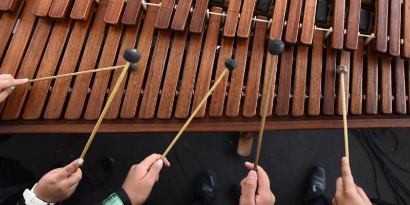 Melodious Mallets (March 28, 2018)