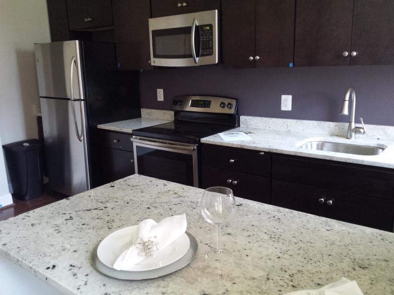 The units are one bedroom condos with a full bathroom and state of the art stainless steel appliances.  The affordable units are priced $171,000; below the market value of more than $200,000.