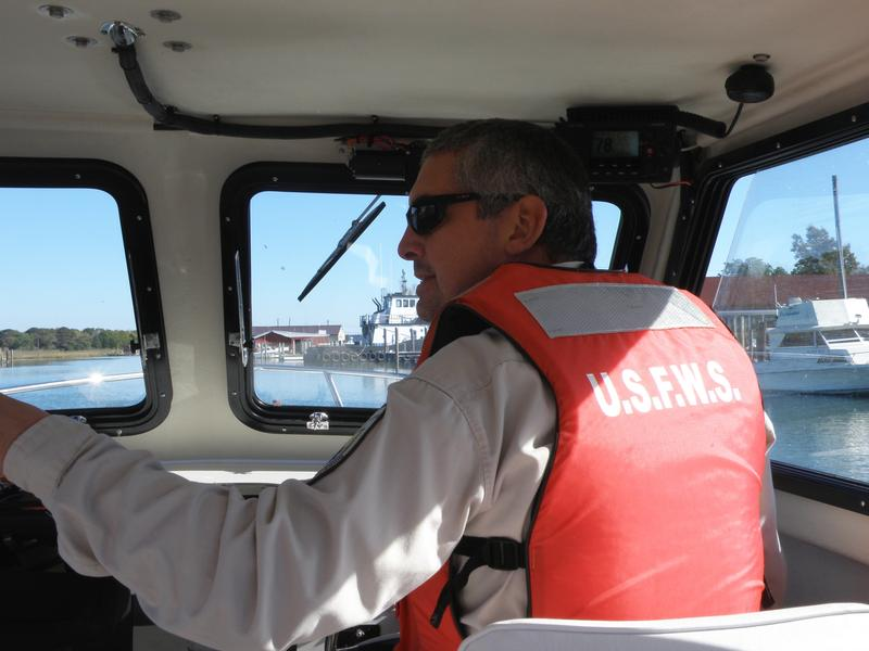 Matt Whitbeck of the U.S. Fish and Wildlife Service pilots his boat through Smith Island