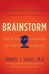 """Daniel Siegel says for teens, """"Life is on fire."""""""