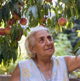 Harry Connolly's photo of Little Italy resident Rosa Vasta in her back yard