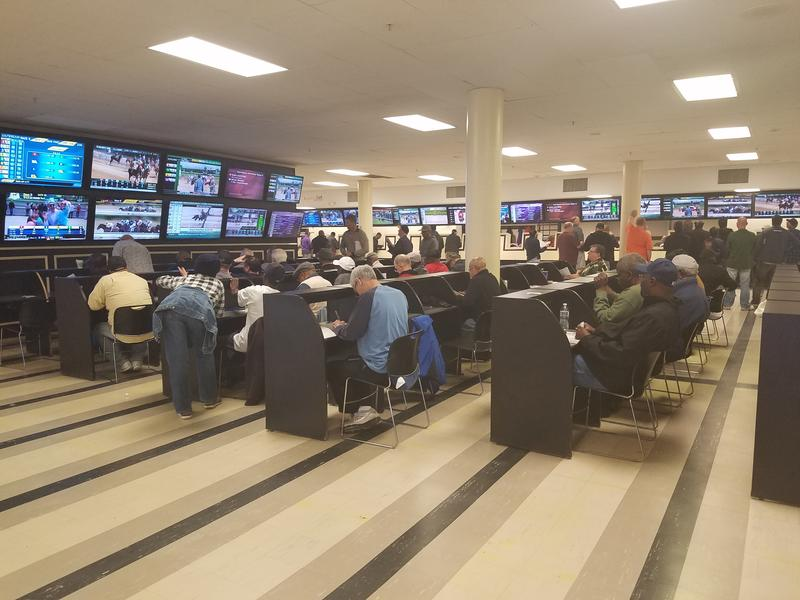 Bettors watch the races on video screens