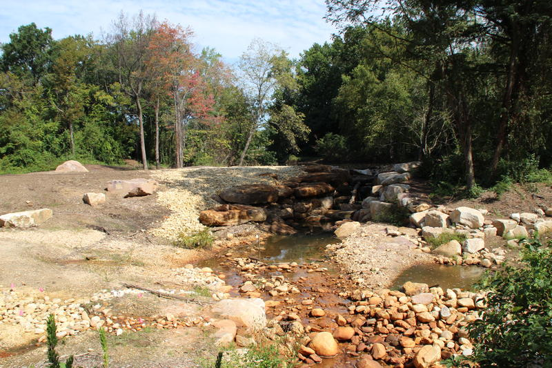 Keith Underwood's regnerative stream restoration project at US National Arboretum in Washington.