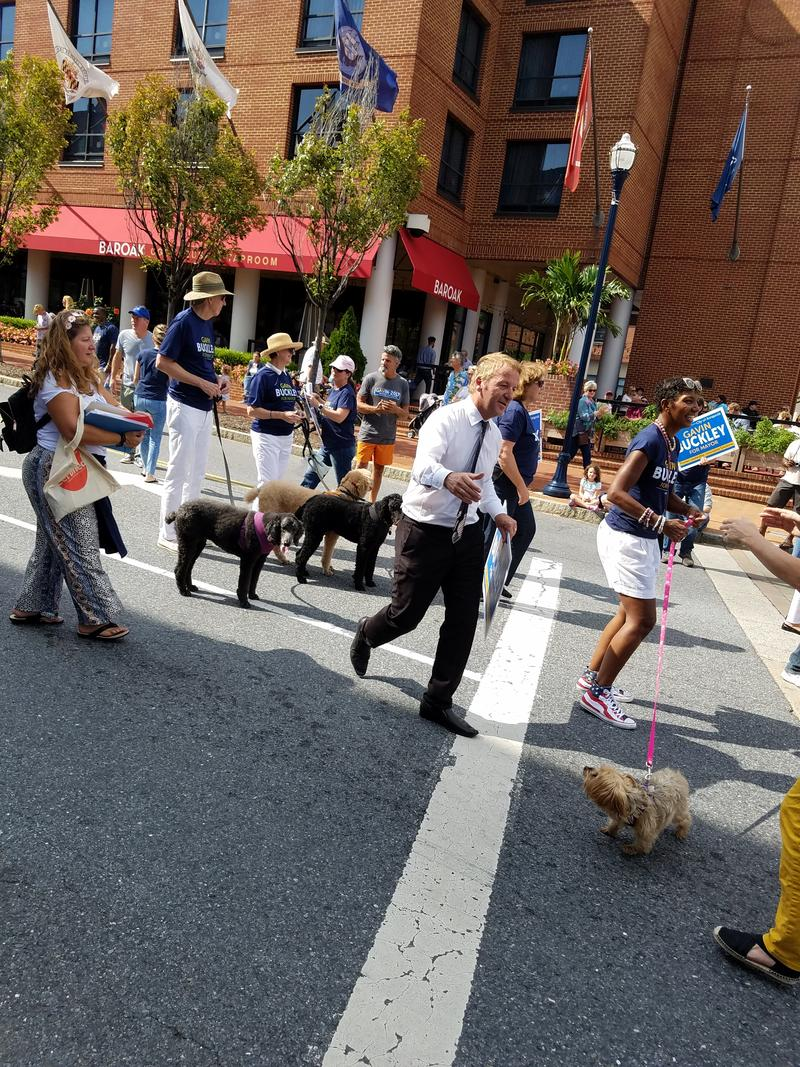 Democratic mayoral hopeful Gavin Buckley struts and dances down West Street in Annapolis' pre-Labor Day parade.