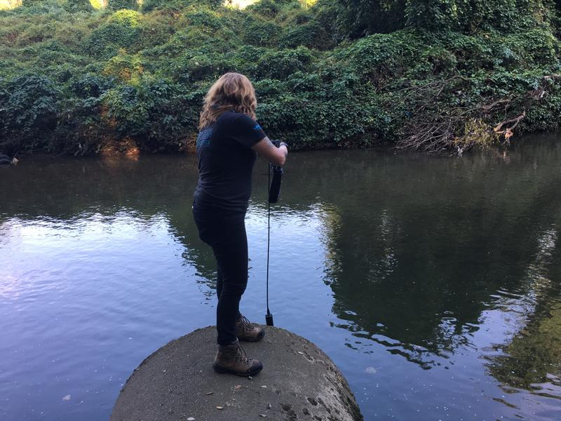 Barbara Johnson, a water quality scientist with Blue Water Baltimore checks the water quality of the Jones Falls near Baltimore Polytechnic Institute.