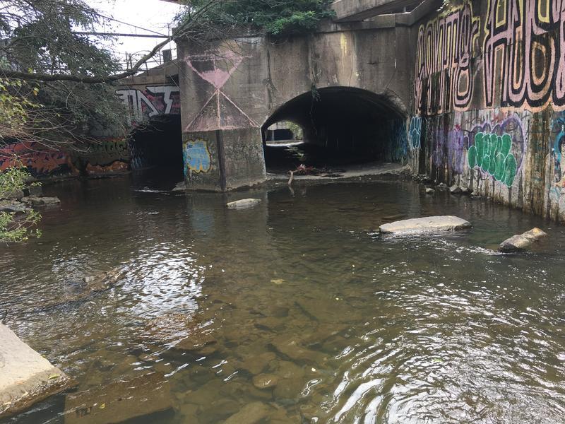 Entrance to Jones Falls tunnels near the Howard Street Bridge