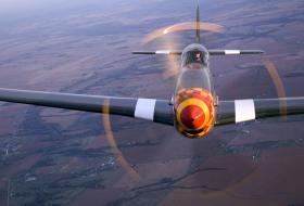 A Mustang in flight