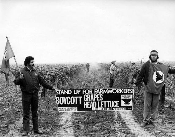 United Farm Workers Boycott