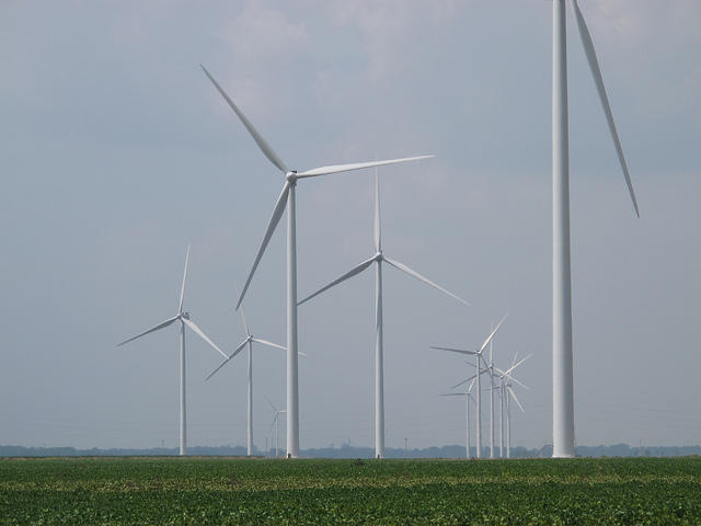 A Paulding County wind farm. Ohio Republicans connected to ALEC sponsored a bill to roll back the state's renewable energy standards.