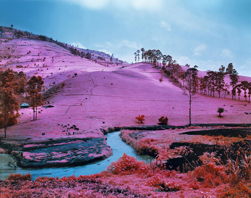 Richard Mosse (Irish, born 1980), Men of Good Fortune, 2011, digital c-print.