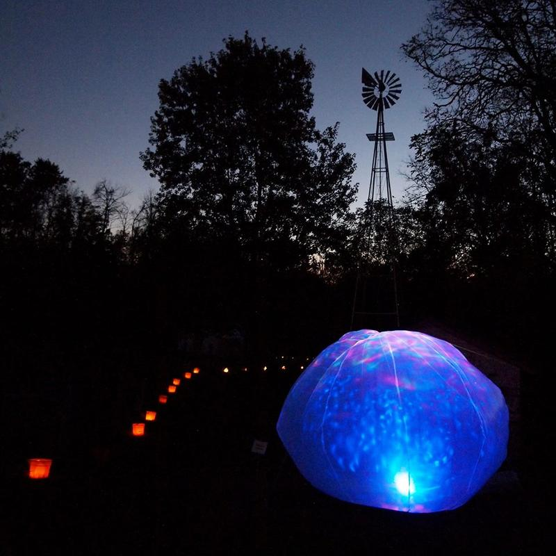 Aullwood's GLOW: Nature at Night returns this weekend