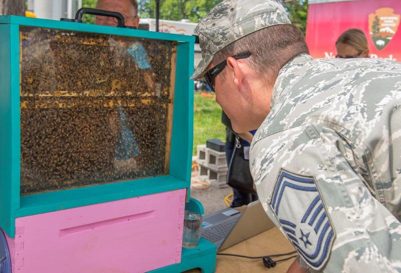 Senior Master Sgt. Benjamin Trevino, Air Force Materiel Command chaplain assistant functional manager, observes a live demonstration hive at the Pollinator Expo held at the Wright Brothers Memorial June 21. Pollinators, also known as bees are vital to the