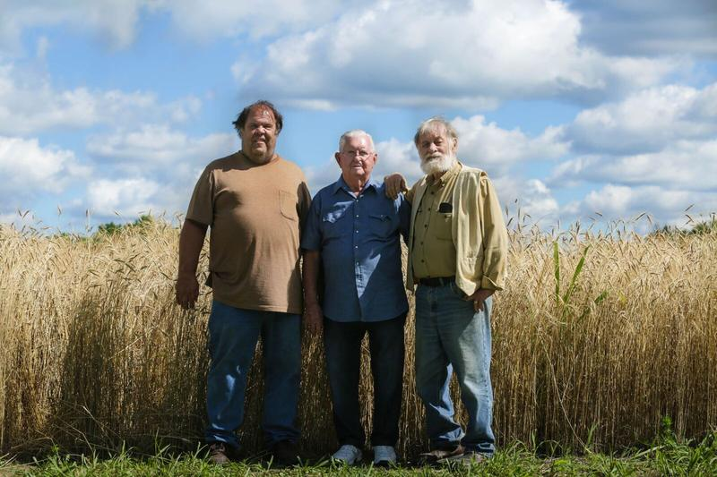 Danny Jones, Dale Friesen, and Ed Hill with a field of Turkey Red Wheat behind them.