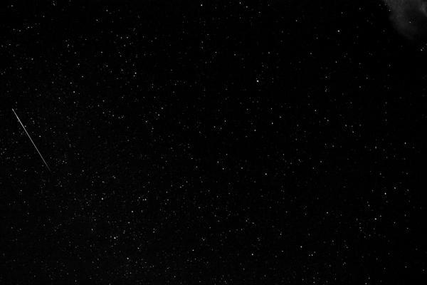 Perseid meteor, 2008
