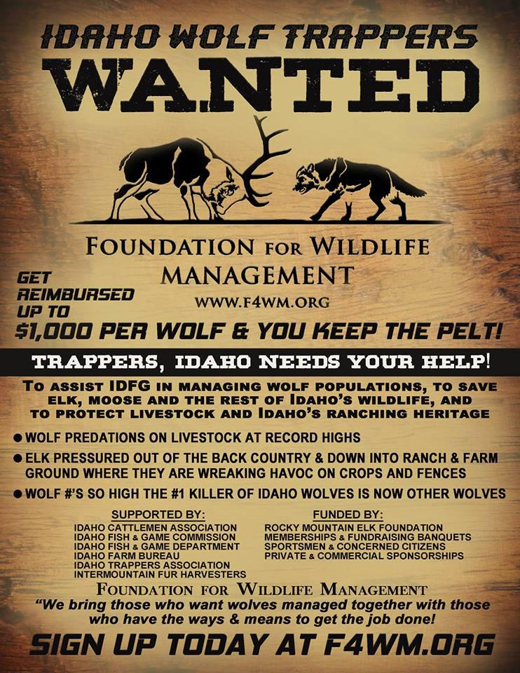 A poster from the Foundation for Wildlife Management promotes its wolf hunter and trapper reimbursement program. The nonprofit pays up to $1,000 in costs for people who successfully harvest a wolf.