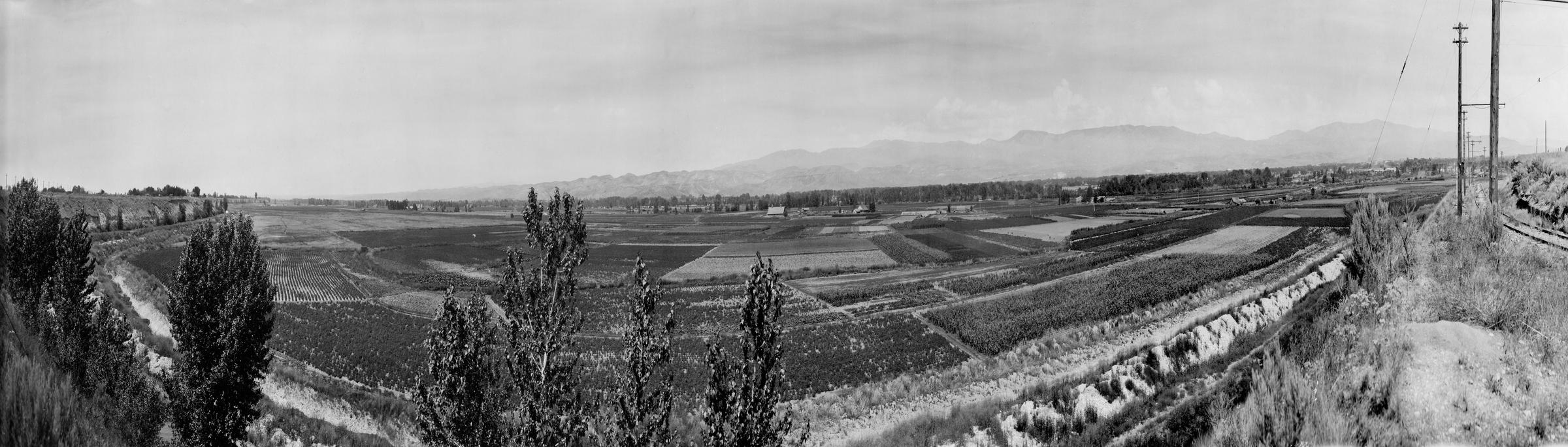 Growing Garden City A History Of Chinese Gardens Gambling And Change Boise State Public Radio