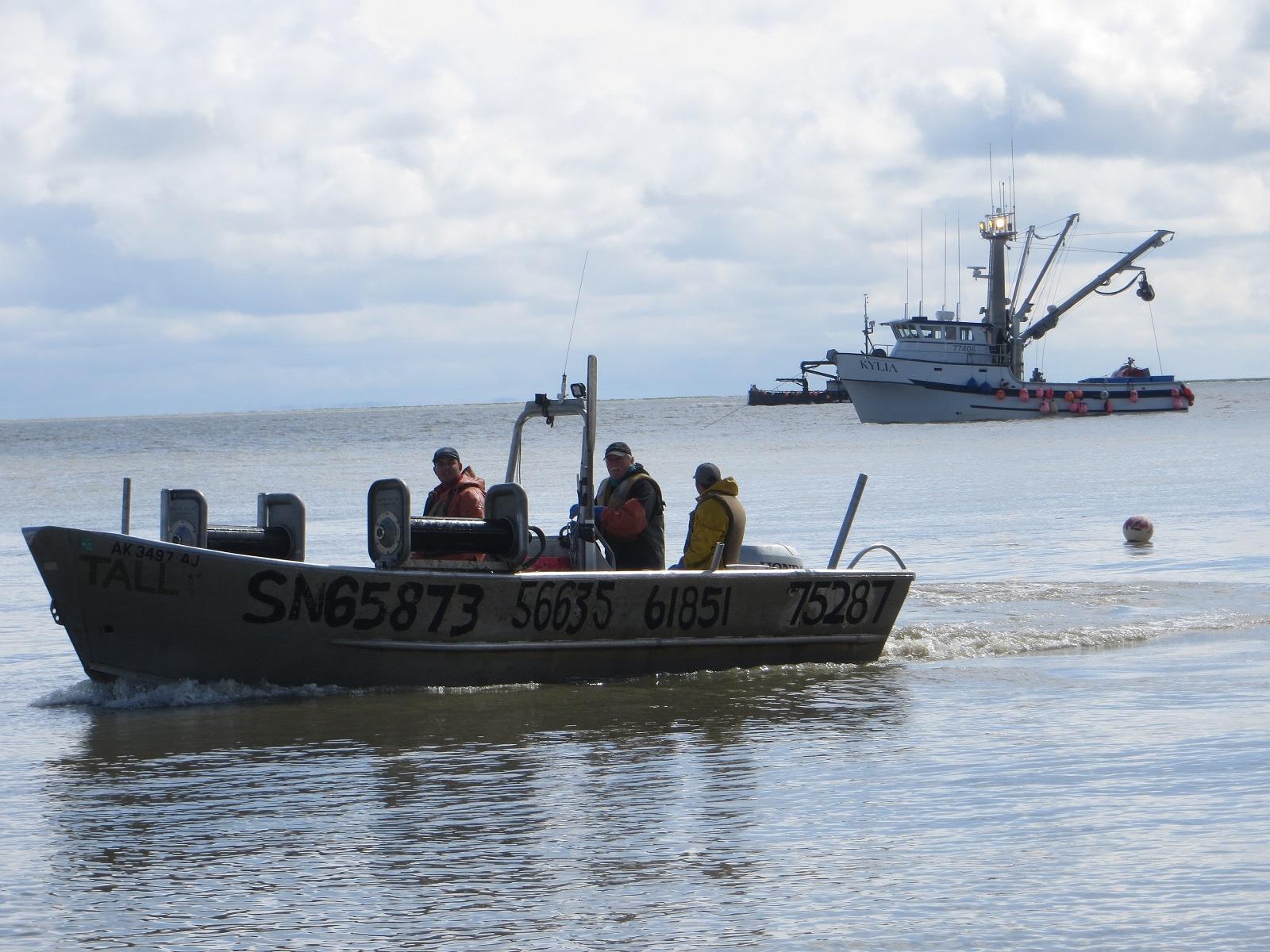 62 3 Million: Bristol Bay's 2018 salmon season the largest