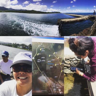 Climate Change's Impact on Hawaiian Fishpond Aquaculture | Hawaii ...