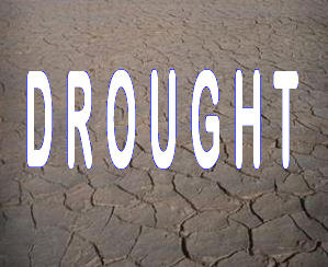 Drought, Wildfires Force Ranchers To Scramble For Feed | KRWG