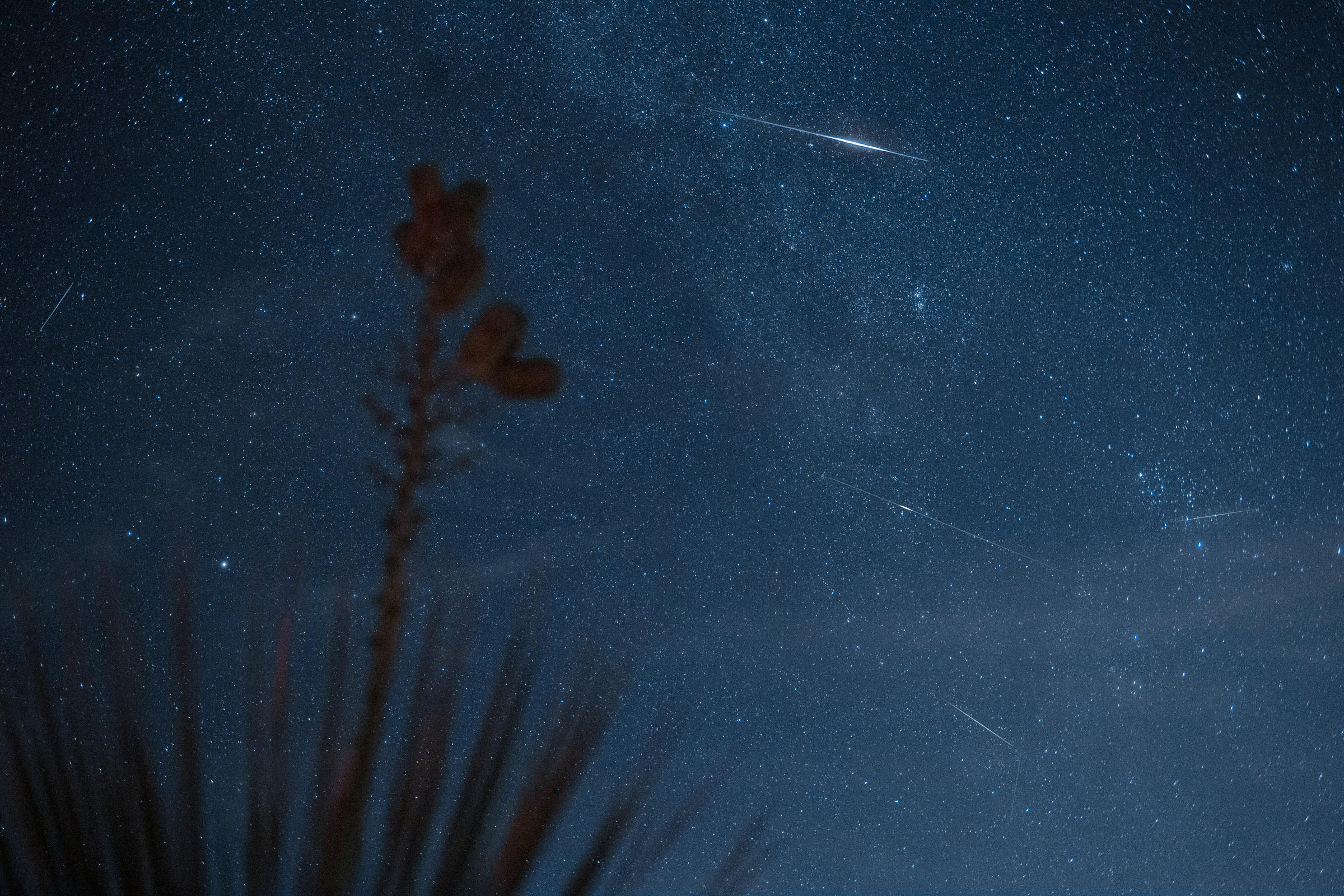 August 2019 Meteor Shower: Perseids