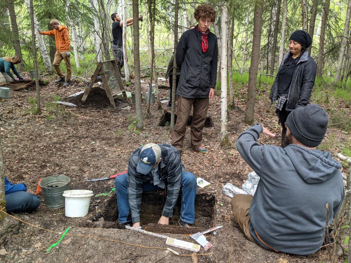 chena excavation