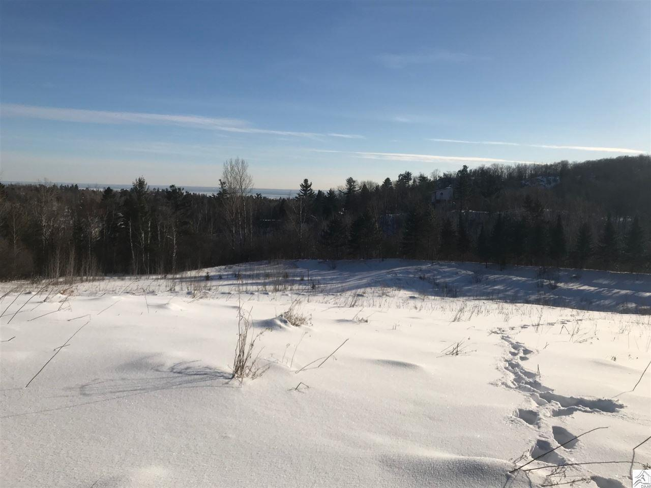 Green Visions: exciting plans for Hartley Nature Center
