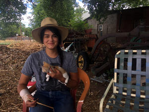 South Valley Farm Grows Connections Rooted In Culture | KUNM
