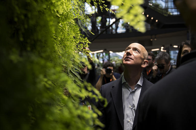 Jeff Bezos looks up at a living wall during the grand opening of Amazon's spheres in Seattle in January