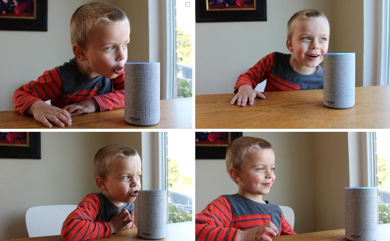 Oscar Pulkkinen, the author's son, was asked to make Alexa fart for the good of journalism. Instead, he asked the device to make 'an elephant sneeze noise.'