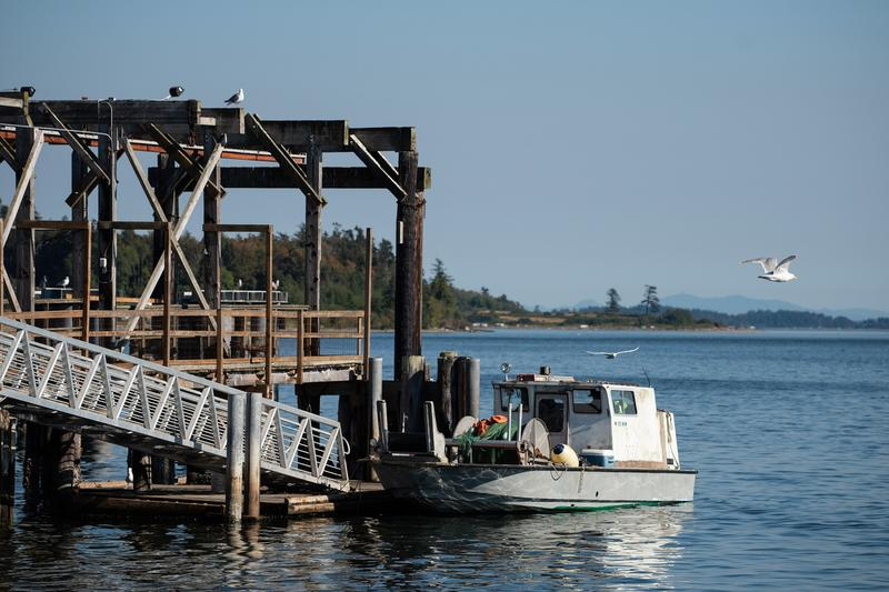 The fishing dock on the Lummi reservation. The Lummi refer to the salmon as their relatives.