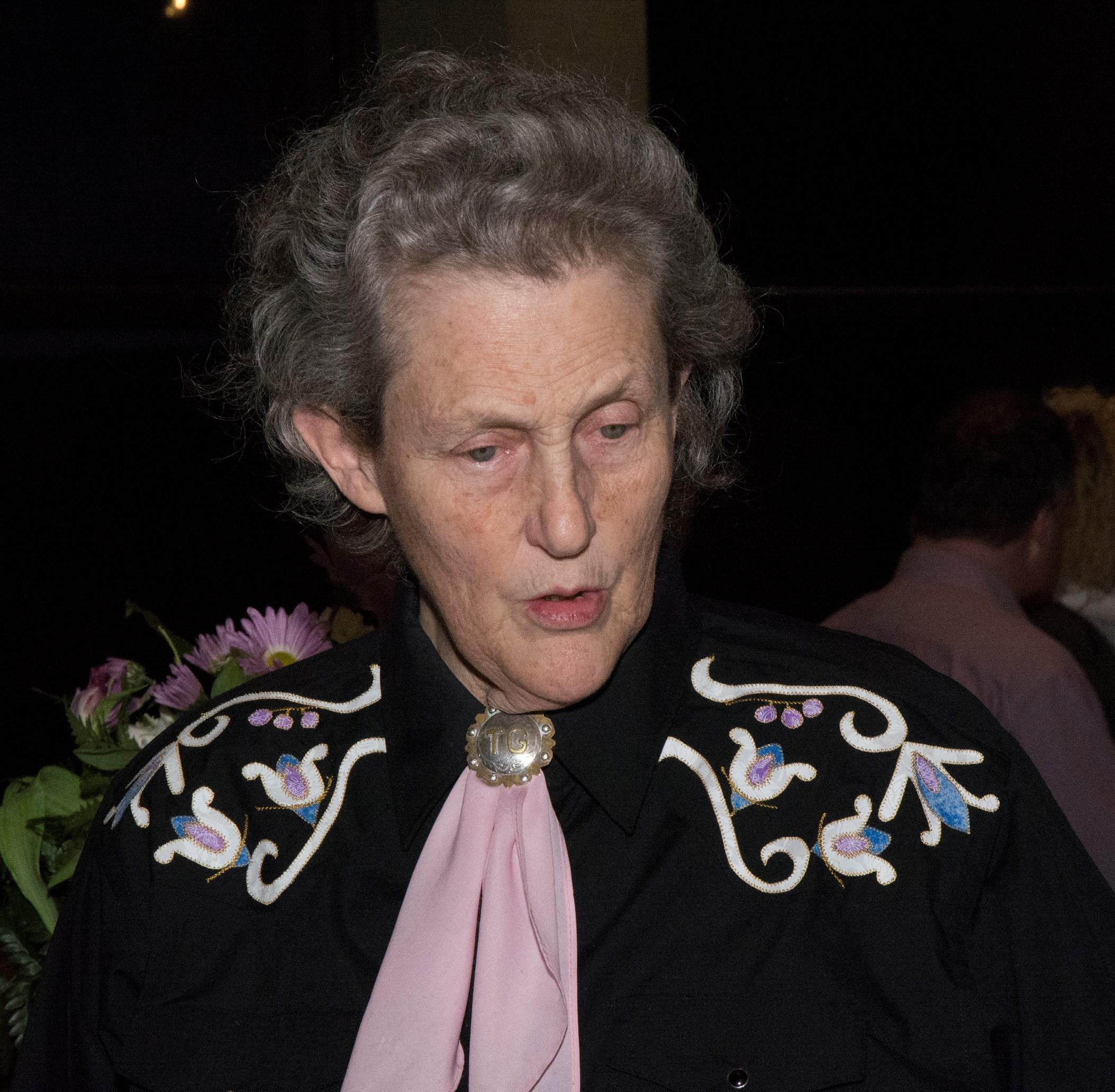 Dr. Temple Grandin on how minds work