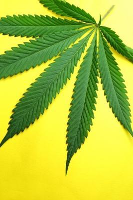 Colorado Legalizes Marijuana | KVNF Public Radio