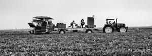 Photojournalist Matt Black On Rising Fear And Hope Among Immigrants In Farming Communities | KVPR