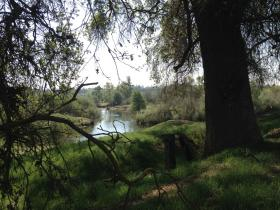 The San Joaquin River looking towards the bluffs on the Fresno side of River West.