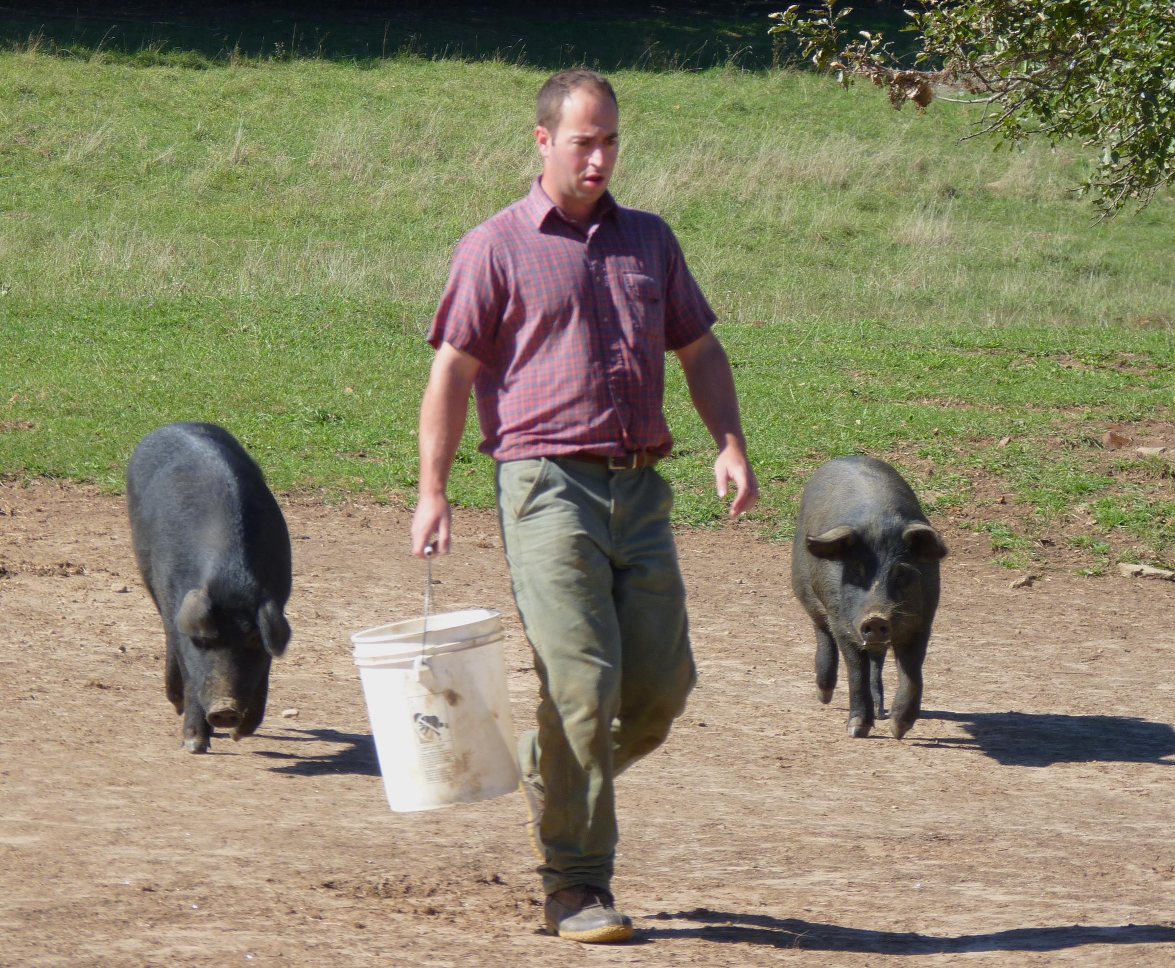Traditional Pork Production Finds Home In N H New