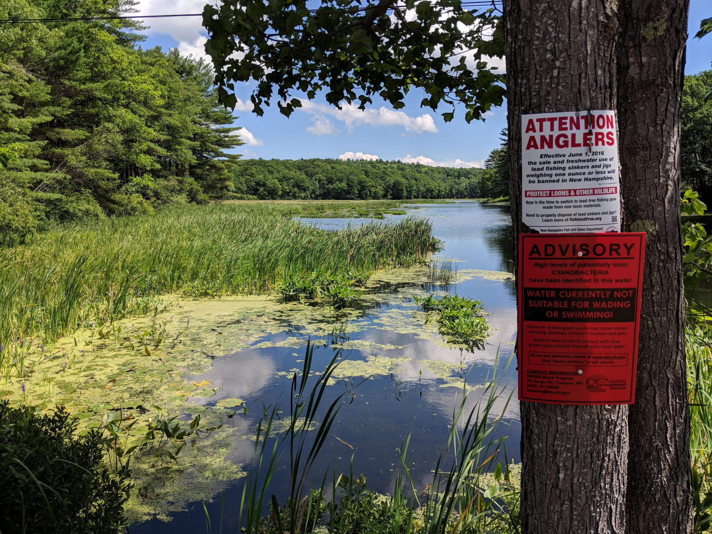 Fish & Game May Face Lawsuit Over Water Pollution From