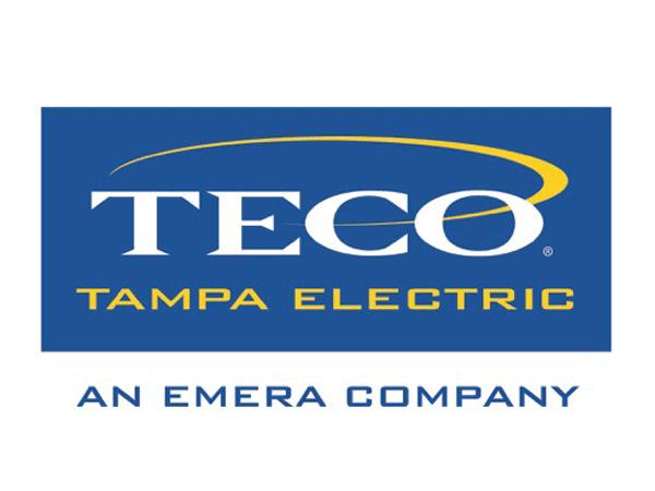 Image result for TECO logo